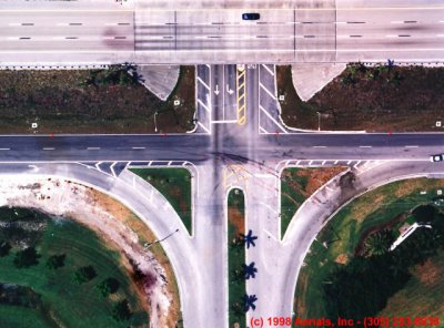Aerial Photography: Applications in Accident Reconstruction icon